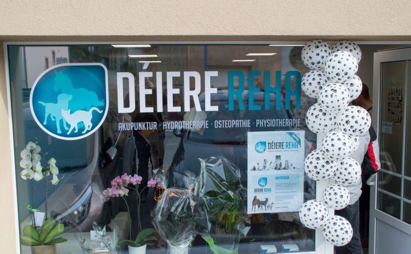 Open Door – Déiere Reha at Dudelange