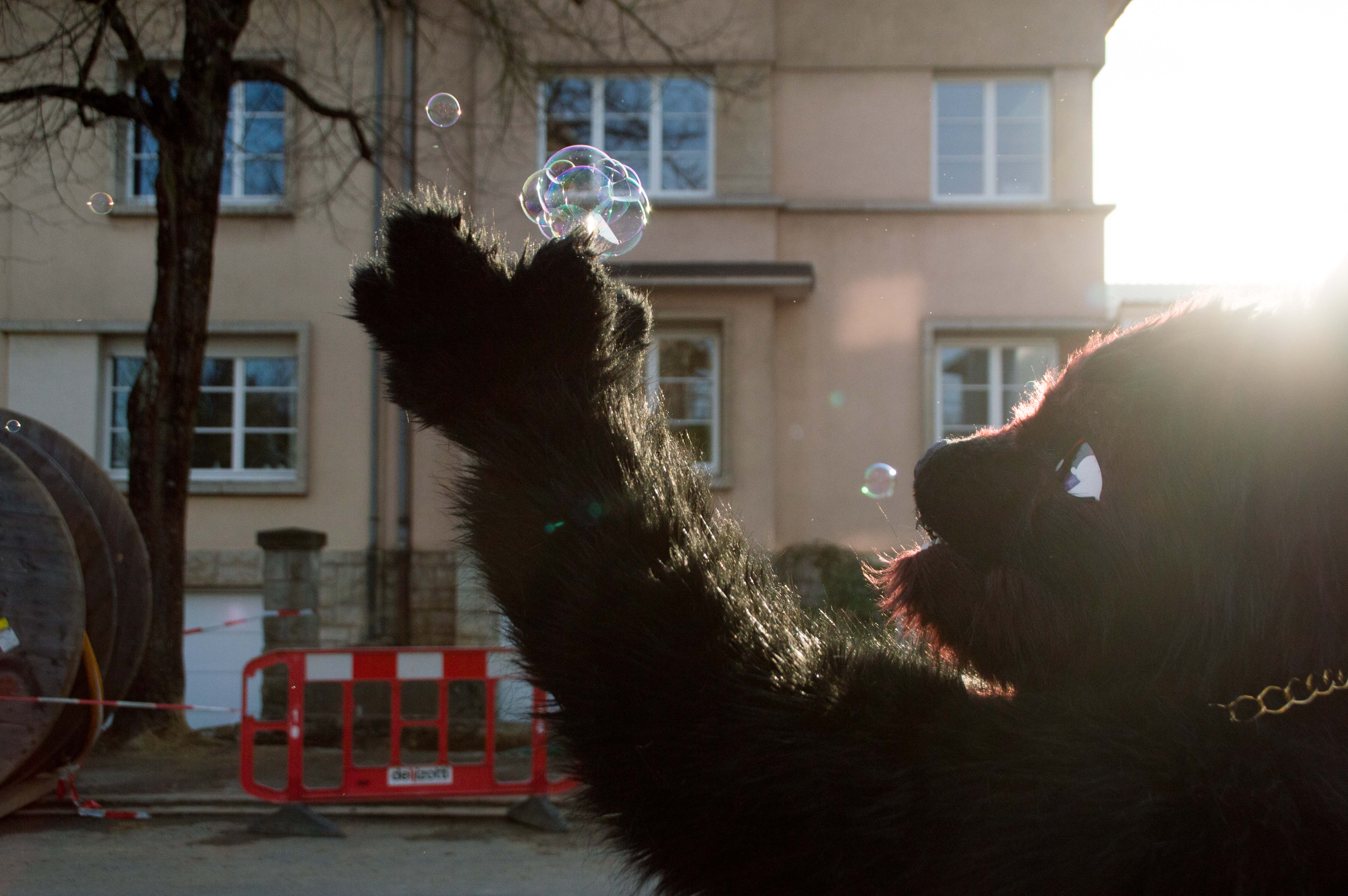 Furry Bubbles 2016 Photos Sam van Maris Geeks Life Luxembourg-0578