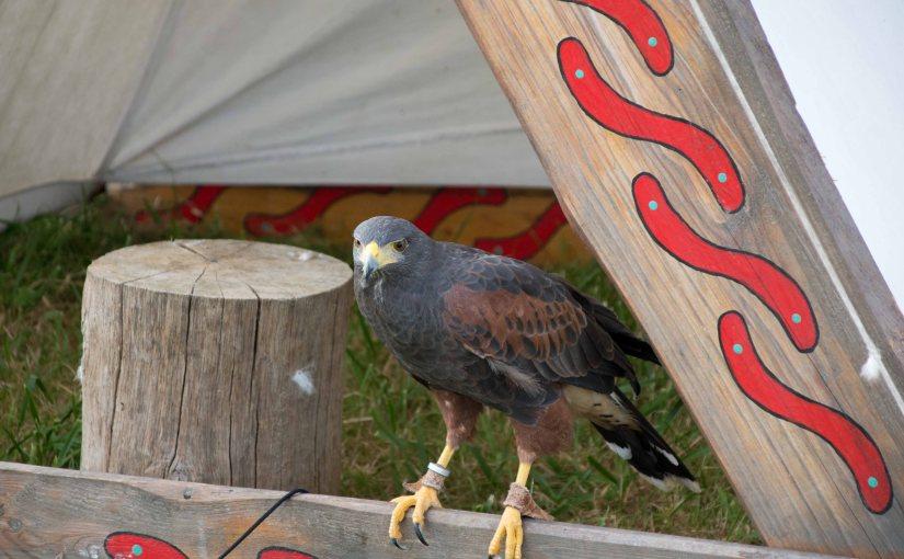 15. Butschebuerger Buergfest – Around theCon